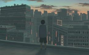 Картинка крыша, закат, город, мальчик