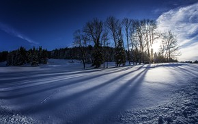 Картинка зима, поле, лес, небо, солнце, облака, снег, деревья, Германия, Бавария