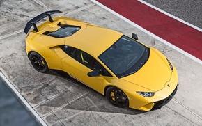 Картинка Lamborghini, logo, Huracan, Huracan Performante, Lamborghini Huracan Performante