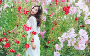 Картинка цветы, улыбка, платье, Brode十三