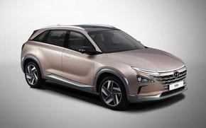 Картинка Hyundai, вид сбоку, 2018, кроссовер, CES, Nexo