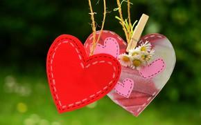 Картинка любовь, цветы, природа, фон, красное, сердце, ромашки, позитив, веревка, сердечки, прищепка, розовые, ярко, зеленое, валентинка, …