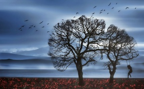 Обои пейзаж, качели, природа, силуэт, девушка, птицы, дерево
