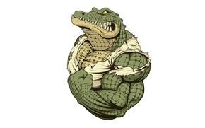 Картинка клики, мускулы, бицепс, кожа, крокодил