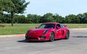 Обои Porsche, Cayman, GT4