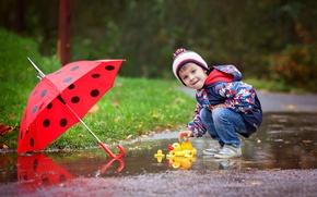 Картинка осень, дождь, улица, игрушка, ребенок, зонт, мальчик, куртка, rain, umbrella, boys, toys, child, glance