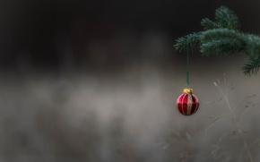 Картинка праздник, игрушка, шар, шарик, ёлка