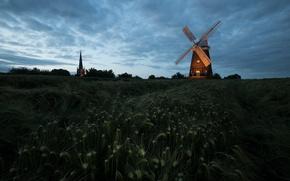 Картинка колосья, ночь, поле, мельница