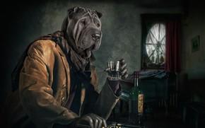 Картинка человек, собака, револьвер