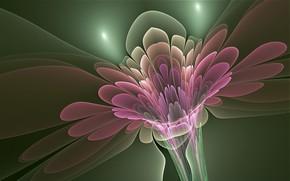 Обои цветок, линии, объем