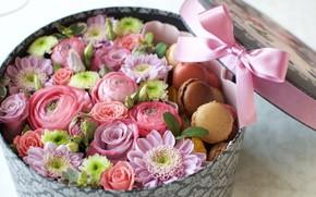 Картинка ранункулюс, бант, коробка, макаруны, хризантема, роза