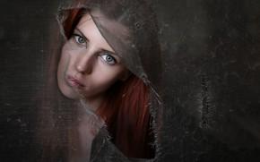 Картинка девушка, портрет, Fulvia