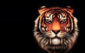 Картинка тигр, фентези, арт, большая кошка, вожак, старейший