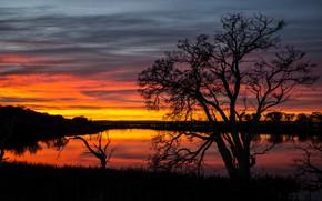 Картинка природа, небо, закат