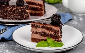 Обои ежевика, шоколад, крем, десерт, торт
