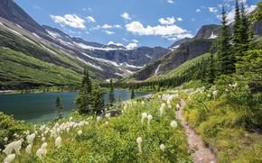 Картинка цветы, красота, озеро, горы, луг, природа
