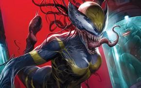 Картинка Девушка, Язык, Girl, Зубы, Костюм, Комикс, X-Men, Marvel, Comics, Веном, Venom, Симбиот, X-23, Марвел, Комиксы, ...
