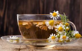 Картинка чай, ромашка, цветки