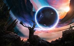 Обои лес, деревья, горы, птицы, абстракция, камни, скалы, планета, свечение, олень, белка, арт, Desktopography, Kevin May