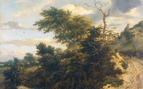 Картинка пейзаж, дерево, масло, картина, Якоб ван Рёйсдал, Песчаная Дорога в Дюнах