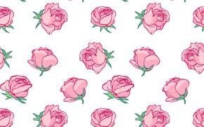 Картинка фон, розы, текстура, бутоны