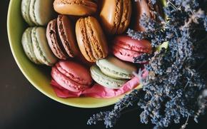 Картинка печенье, лаванда, macaron, макарун