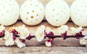 Картинка цветы, праздник, доски, яйца, ветка, Пасха