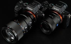 Обои макро, пара, объектив, Sony, фотоаппараты