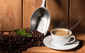 Картинка листья, кофе, ложка, чашка, напиток, блюдце, зёрна, совок