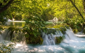 Картинка лес, вода, деревья, природа, водопад, поток