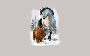 Картинка лошадь, собака, прогулка