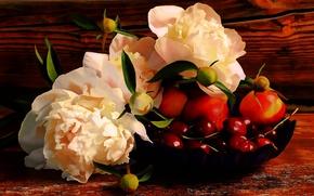 Картинка Рисунок, Фрукты, Арт, Art, Пионы, Peonies, Cherries