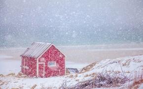 Картинка зима, море, снег, побережье, Норвегия, домик, Norway, Нурланн, Лофотенские острова, Норвежское море, Lofoten, Norwegian Sea, …
