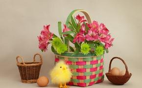 Картинка цветы, корзина, яйца, Пасха, цыпленок