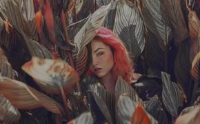 Картинка взгляд, листья, лицо, волосы, цвет