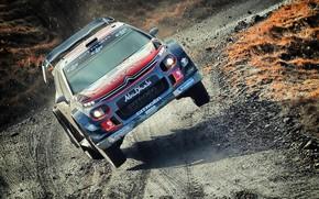 Картинка Спорт, Машина, Гонка, Ситроен, Грязь, Citroen, Автомобиль, WRC, Rally, Ралли, Citroen С3, CITROËN C3 WRC