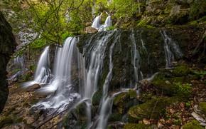 Картинка лес, листья, камни, Франция, водопад, мох, кусты, Doriaz Waterfall