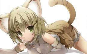 Картинка girl, anime, japonese, Kemono Friends