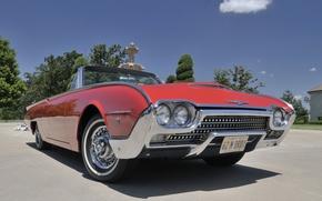 Картинка Roadster, Ford, Convertible, 1962, Thunderbird