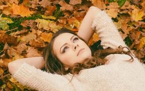 Картинка осень, взгляд, листья, девушка, настроение, руки