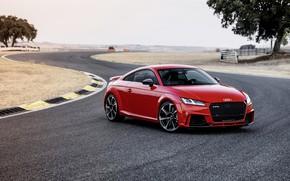 Картинка Audi, German, Red, 2018, Track, RS, TT
