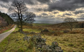Обои дорога, поле, трава, облака, пасмурно, Британия, Walker Fold, Chaigley, Rose Cottage