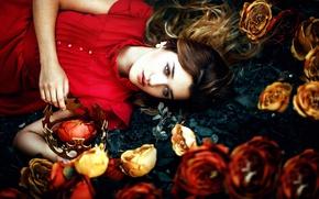 Картинка девушка, цветы, корона, Ronny Garcia