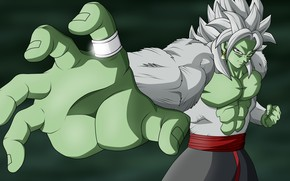 Картинка warrior, game, anime, Dragon Ball Super, Zamasu, DBS, japonese, god, manga, asian, martial artist, Dragon ...