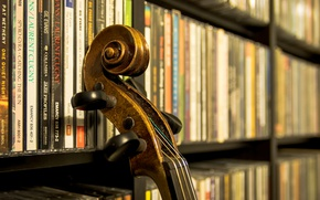 Обои гриф, винт, музыкальный инструмент, струны, фонотека