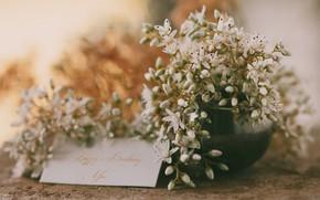 Картинка цветы, поздравления, открытка, happy birthday me, С днем рождения