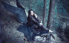 Обои angel, black wings, Forest
