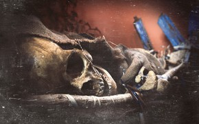 Обои скелет, Tomb of The Eagles, череп, Scotland, Оркнейские острова, Щотландия, текстура, Orkney, Гробница орлов