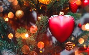 Картинка украшения, lights, огни, сердце, елка, Новый Год, Рождество, гирлянда, happy, Christmas, heart, wood, tree, bokeh, …