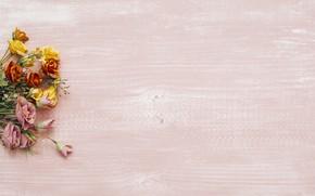 Картинка цветы, фон, colorful, wood, flowers